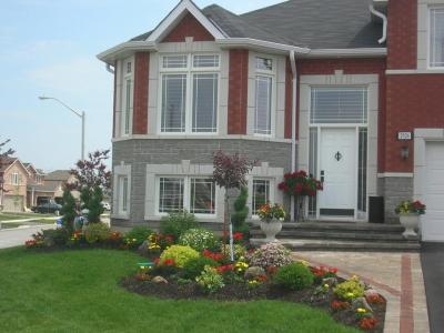 Colourful front entrance garden